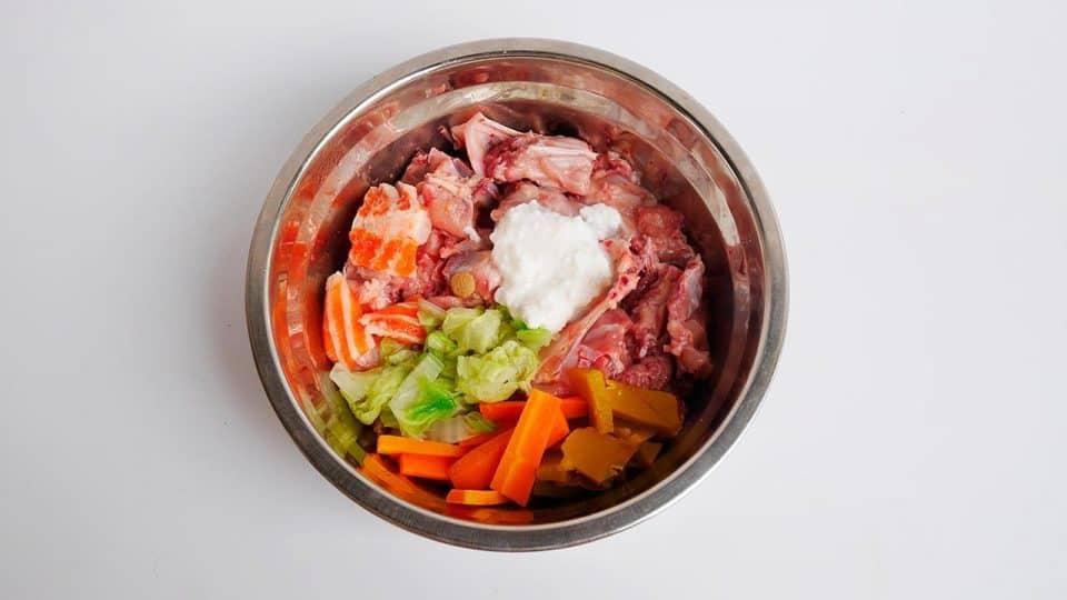 Futternapf gefüllt mit Gemüse und Fleisch