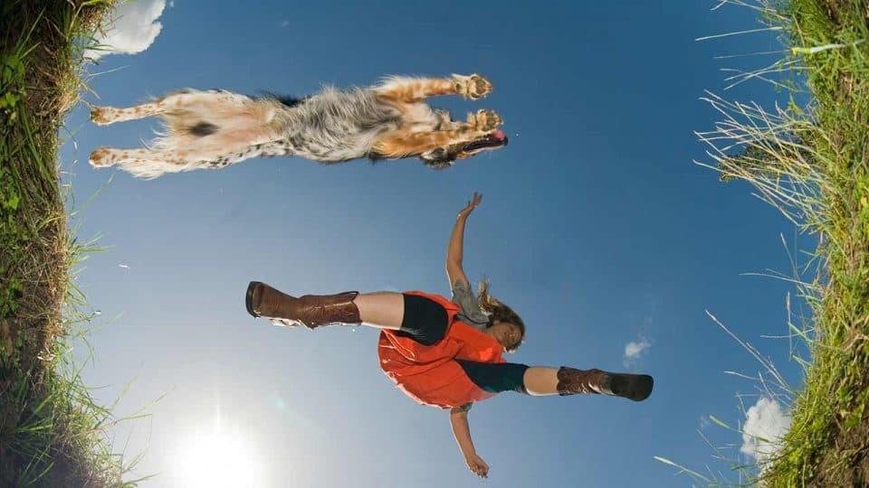 Beschäftigung, Spiele und Hundesport
